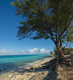 Wyspy Bimini