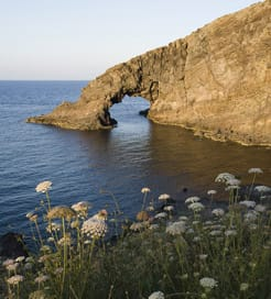 Wyspa Pantelleria